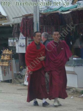 Street Monks - Pictures/Photography